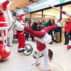 Kerst entertainment inhuren huren boeken bij winter